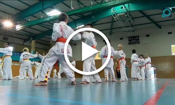 El grup de taekwondo selvatà participa en les jornades de tecnificació i perfeccionament del gimnàs Laissa