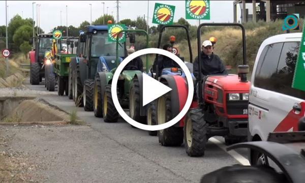 Pagesos i productors de l'avellana es manifesten pel baix preu del fruit amb una tractorada