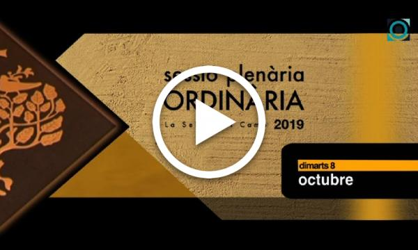 Ple ordinari 08/10/2019 (Part 1)