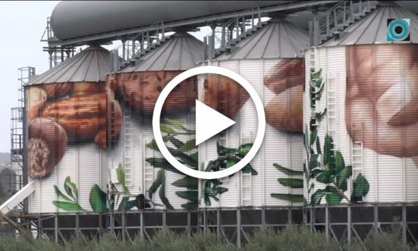 Un gran mural decorarà les sitges de Coselva per celebrar el 120è aniversari de la cooperativa