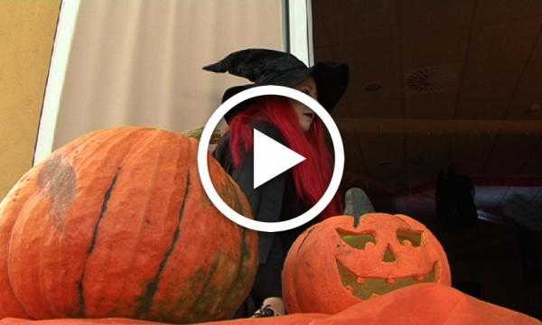 L'Alzina celebra la festa de Halloween